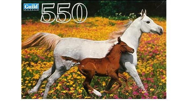 White Horses Hasbro Guild 300