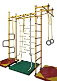 NiroSport FitTop M3 Indoor Klettergerüst für Kinder Sprossenwand für Kinderzimmer Turnwand Kletterwand, TÜV geprüft, kinderleichte Montage, Made in Germany (Rot, Raumhöhe 220-270 cm)