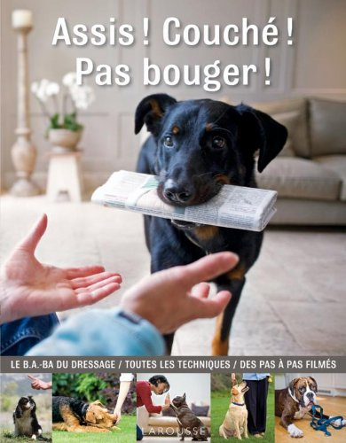 Assis ! couch ! pas bouger !