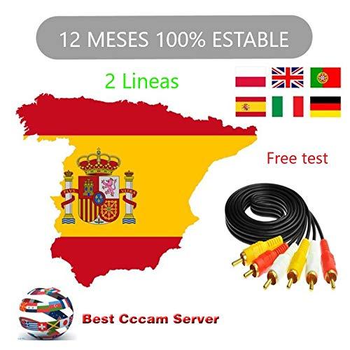 12 meses cccam 1 año Europa 2 Clines para un perfecto funcionamiento suscripción HD Soporte España Alemán Polonia UK para todos los decodificadores ...