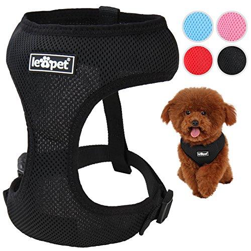 hundeinfo24.de Hundegeschirr Hundehalsband Hundezubehör in vier verschiedenen Farben und 5 verschiedenen Größen (XS, S, M, L, XL) größenverstellbar