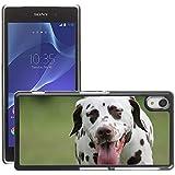 GoGoMobile Etui Housse Coque de Protection Cover Rigide pour // M00123315 Dálmatas perro de mascota // Sony Xperia Z2 L50W