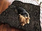 Vintage Flower Art Hundebett Pet Supplies Große extra Größe XL Reißverschluss mit Innenkissen
