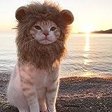 SEALEN Perro Mascota y Disfraces de Gato para para el Día de Acción de Gracias Navidad (Gato León)