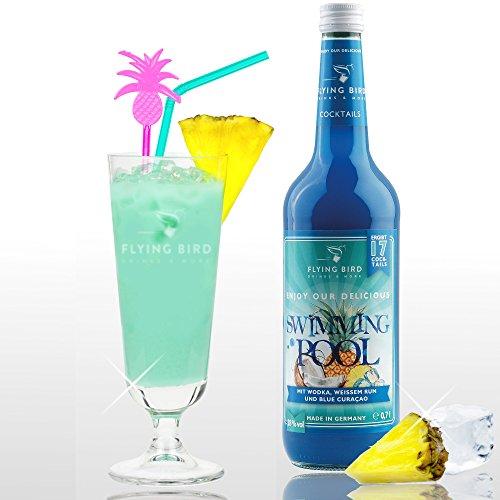 Swimming Pool 28{a8fa831ca6445679eb77488424e87546004ebbc3354d31762cf0c7d35f96376a} Vol. - PreMix für 17 alkoholische Cocktails – Flasche 0,7 l mit allen Zutaten - Einfach mit Ananassaft & Eis mixen, fertig