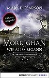 Morrighan - Wie alles begann: Die Chroniken der Verbliebenen