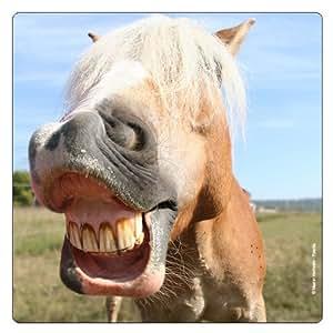 Aimant de r frig rateur chevaux cheval dents rigolo - Cheval rigolo ...