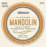 D\'Addario EFT74 Jeu de cordes pour Mandoline 11-39 Medium