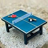Ogquaton Enfants Cadeau 1:12 Dollhouse Miniature Table Tennis Set réaliste Jouet en Bois Durable et utile