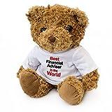 New–Beste Finanzberater in der Welt–Teddy Bear–Niedliche Kuschlig Weich–Award Geschenk Geschenk Geburtstag Xmas