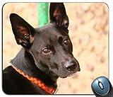 Maulkorb für Hunde Halsband 108296Generic Maßgeschneiderte Gummi Mauspad Gaming Mauspad