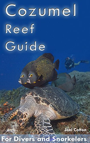 Cozumel Reef Guide: for Divers and Snorkelers (English Edition) por Joel Cotton