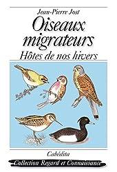 Oiseaux migrateurs : Hôtes de nos hivers