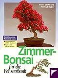 Zimmer-Bonsai für die Fensterbank