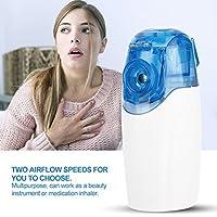 Preisvergleich für Ultraschallvernebler Zerstäuber, Gesichtssprüher Dampfer Luftbefeuchter mit 2 Ersatz Kopf, USB Nano Spray Gesicht...