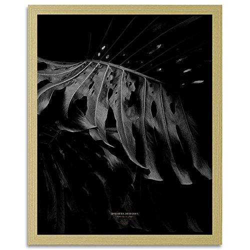 Feeby. Tableau encadré, Tableau Déco, Tableau Mural, Décoration Murale Image Imprimée, 1 Partie - 40x60 cm, Dmitry Belov - Plante Nature Noir