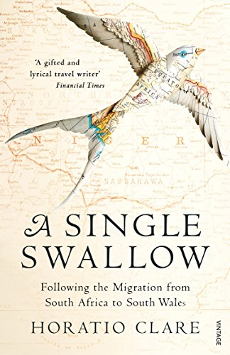 A Single Swallow: Following An Epic Journey From South Africa To South Wales