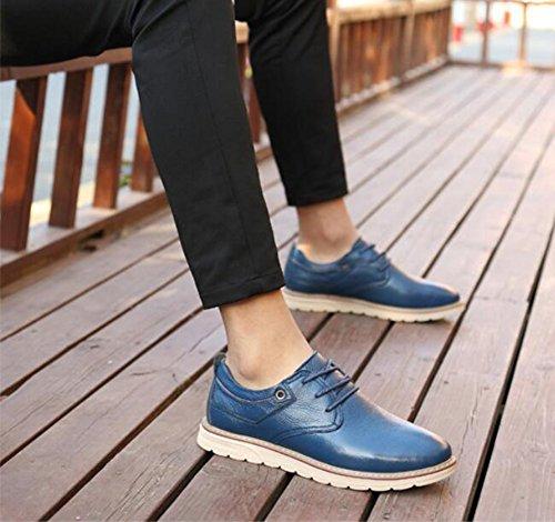 Hommes Casual Les chaussures en cuir occasionnelles des hommes formaient le travail daffaires formel de chaussures de conduite de confort ( Color : Black-43 ) Blue-44