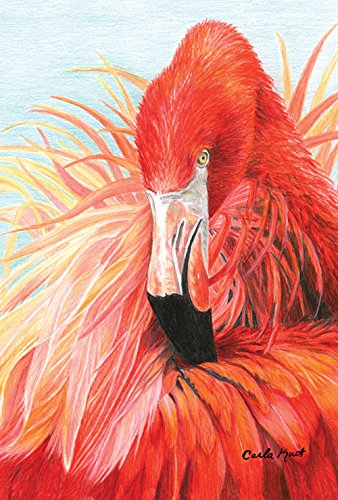 ahne, Flamingo, Tutu, 71,1 x 101,6 cm, dekorativ, bunt, Tropische Rosa ()