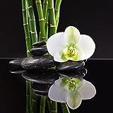 Eurographics Black Orchid 50x50 Glasbild, Glas, bunt, 50 x 50 x 2 cm