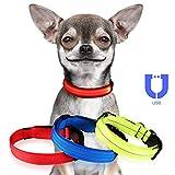 Jinzhao Hundehalsband-LED Hundehalsband mit wiederaufladbarem USB-Licht, 3 Leucht- / Reflektionsmodi-Strings, Verstellbarer D-Ring mit Schnalle im Freien (Rot 12.2''-15.8''Neck S)