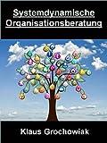 Systemdynamische Organisationsberatung: 'Die Kenntnis der blinden Flecke löst Störungen und entfaltet neue Energien '
