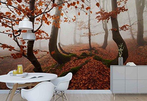 Vlies Fototapete Fotomural - Wandbild - Tapete - Herbst Wald Bäume Blätter Bedecken Nebel - Thema Wald und Bäume - MUSTER - 104cm x 70.5cm (BxH) - 1 Teilig - Gedrückt auf 130gsm Vlies - 1X-818873VEM -