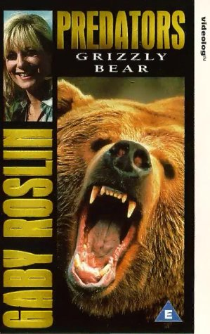 Grizzly Bear Tier - Predators-Grizzly Bear