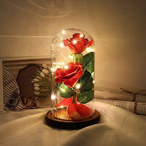 ose Blumen Die Schöne und das Biest Rose Kit LED String Licht mit Glasabdeckung Party Hochzeit Dekor Geburtstagsgeschenk ()