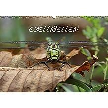 EDELLIBELLEN (Wandkalender 2017 DIN A3 quer): Vom Schlupf zur Blaugrünen Mosaikjungfer (Geburtstagskalender, 14 Seiten ) (CALVENDO Tiere)