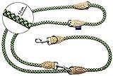 PROFTI Hundeleine aus Nylon, Lederelemente, 4fach verstellbar, große/Kleine Hunde, 1,2x230cm, robust/schwer, Grün/Grau