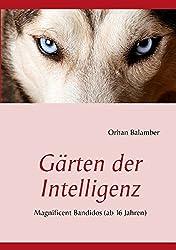 Gärten der Intelligenz: Magnificent Bandidos (ab 16 Jahren)