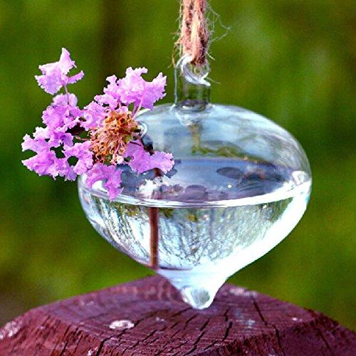 cipolla-forma-appeso-vaso-di-vetro-contenitore-piante-idroponiche