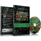 Aquarium DVD - African Fish Tanks from Malawi - 100 Minutes Filmed in HD