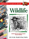 Collins Learn to Draw – Wildlife: A Step-by-Step Guide to Drawing Success