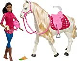Barbie Dreamhorse Fashion Doll - Best Reviews Guide