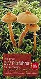 Der große BLV Pilzführer für unterwegs: 1200 Arten 1000 Farbfotos - Ewald Gerhardt