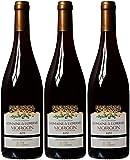 Domaine de l'Oseraie Morgon Signe Vignerons Beaujolais 2011 Wine 75 cl (Case of 3)