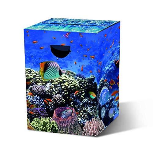 Remember Papphocker 'Aquarium'