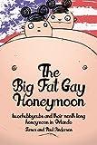 Two Chubby Cubs: The Big Gay Florida Honeymoon (English Edition)