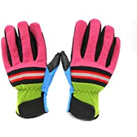 Longboard de gran calidad // guantes para monopatín Freeride tanto como otros guantes para esquí de fondo. Talla:small