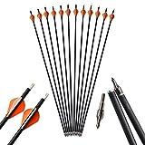 """AMEYXGS 6/12pcs Tiro con L'Arco 31"""" Frecce in Carbonio Spine 500 Freccia da Caccia per Arco Ricurvo e Composto (6pcs)"""