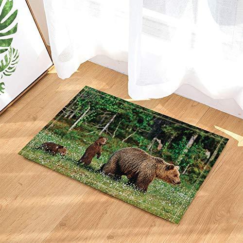 Dekoration Wilde Mutter Grizzly Spielen Ihr Baby Dschungel Anti-Rutsch-Türmatte BadeziFFermatte 40 * 60CM ()