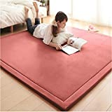 Potter Dicke Coral Fleece Teppich_Thick Coral Fleece Teppich Wohnzimmer Schlafzimmer Teppich, 180 x 200