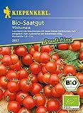 Saatgut Tomaten Rote Murmel (Bio-Saatgut)