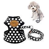 Zunea Hundegeschirr für Kleine Hunde Welpe Hund Weste Geschirr mit Leine Set Verstellbar Mesh Gepolstert Kein Pull für Katze Chihuahua Schwarz L