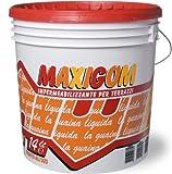 Guaina liquida calpestabile migliori prodotti opinioni for Guaina liquida trasparente mapei