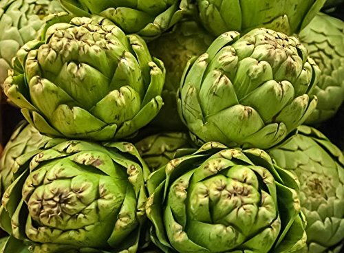 Alcachofa'Gros Vert de Laon' - 10 semillas