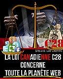 Telecharger Livres La loi Canadienne c28 concerne toute la planete web (PDF,EPUB,MOBI) gratuits en Francaise