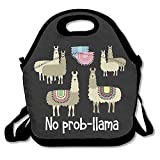 Best Teen Lunch Boxes - Tribal No Prob-llama Lunch Bags Insulated Travel Picnic Review